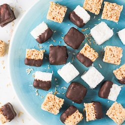 Healthy 2-Ingredient Coconut Bites