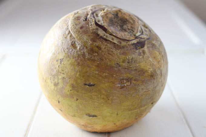 Rutabaga vegetable root.